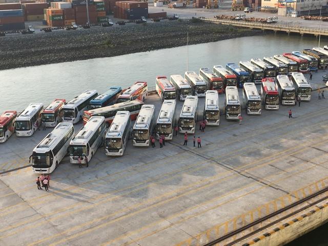 Rows of excursion coaches